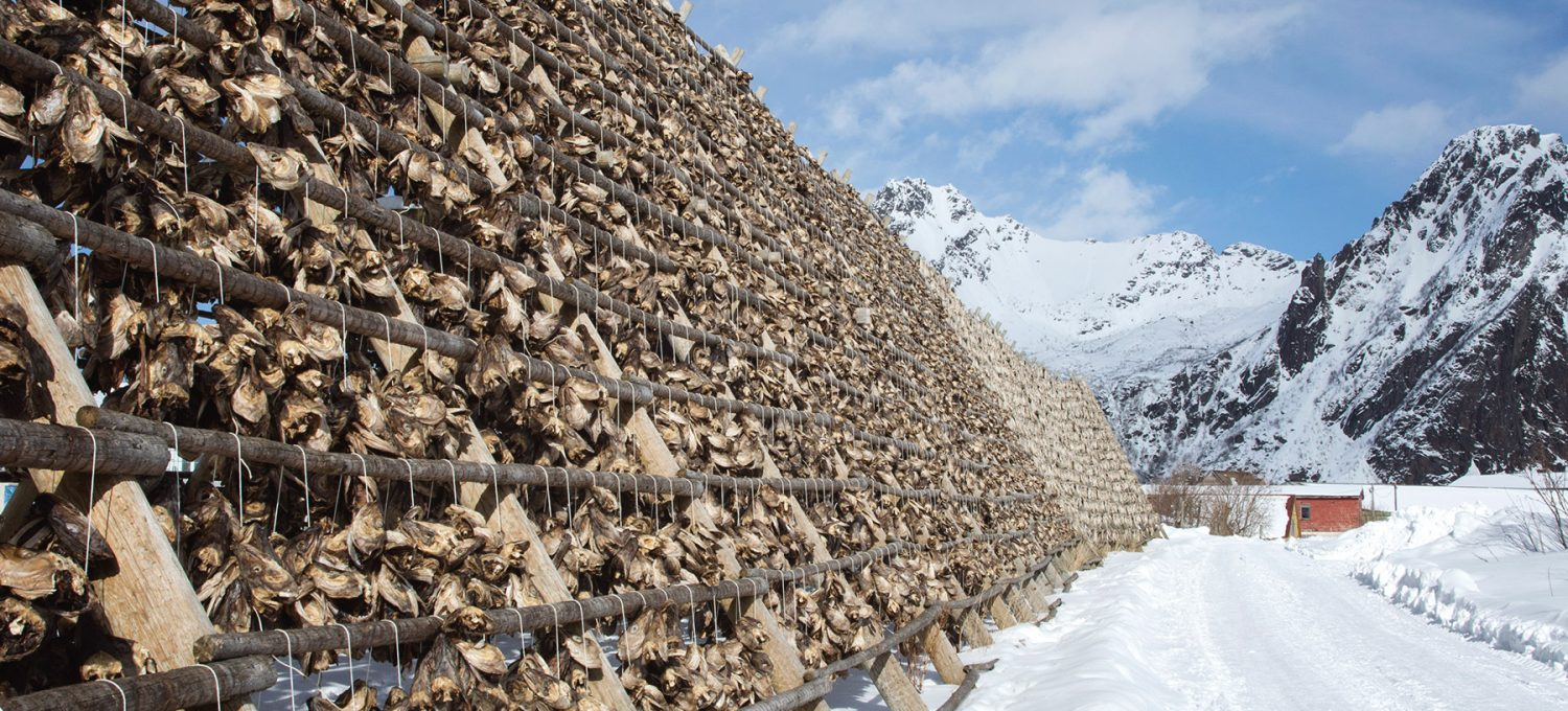 Side view stockfish frames