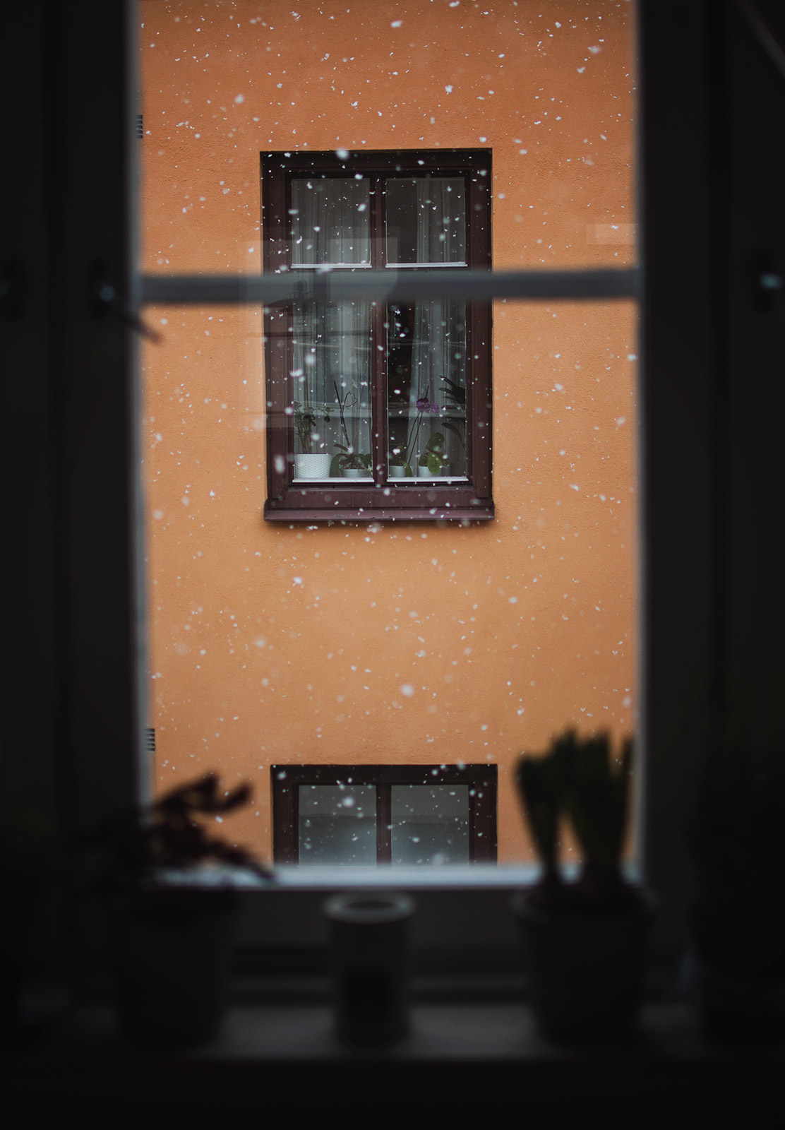 Snow in window
