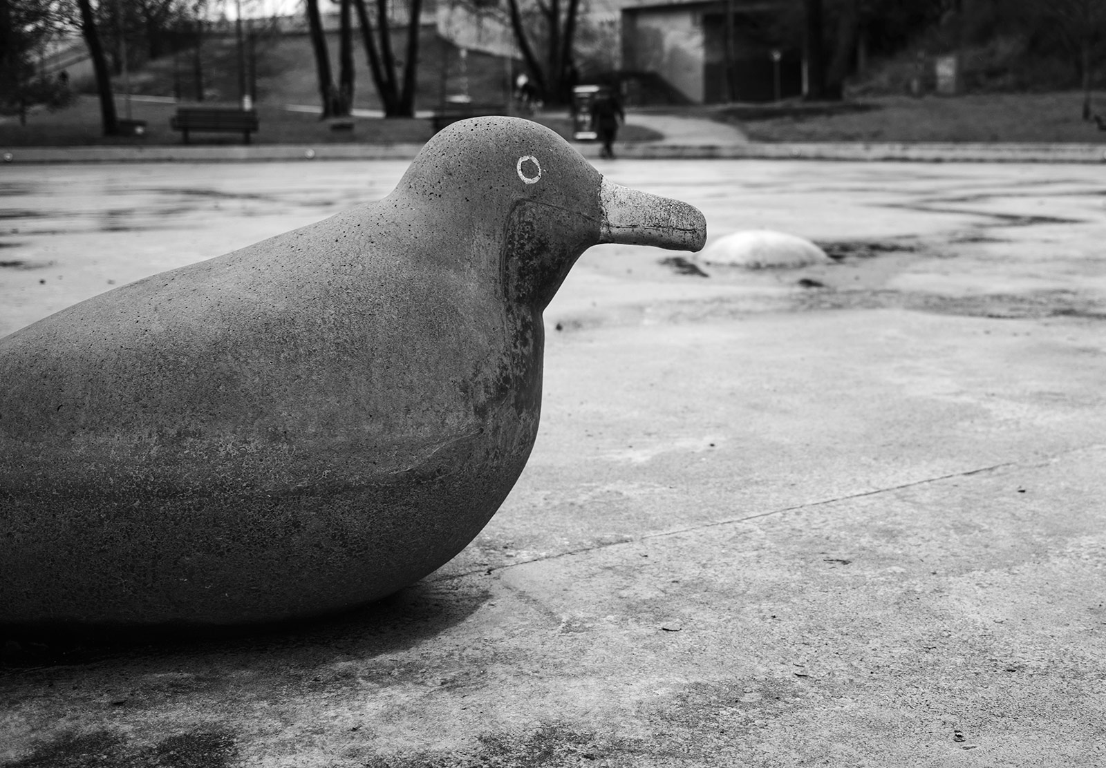 Concrete bird