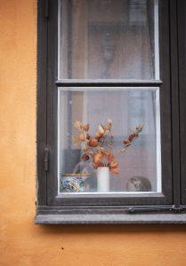 Dried flowers on windowsill