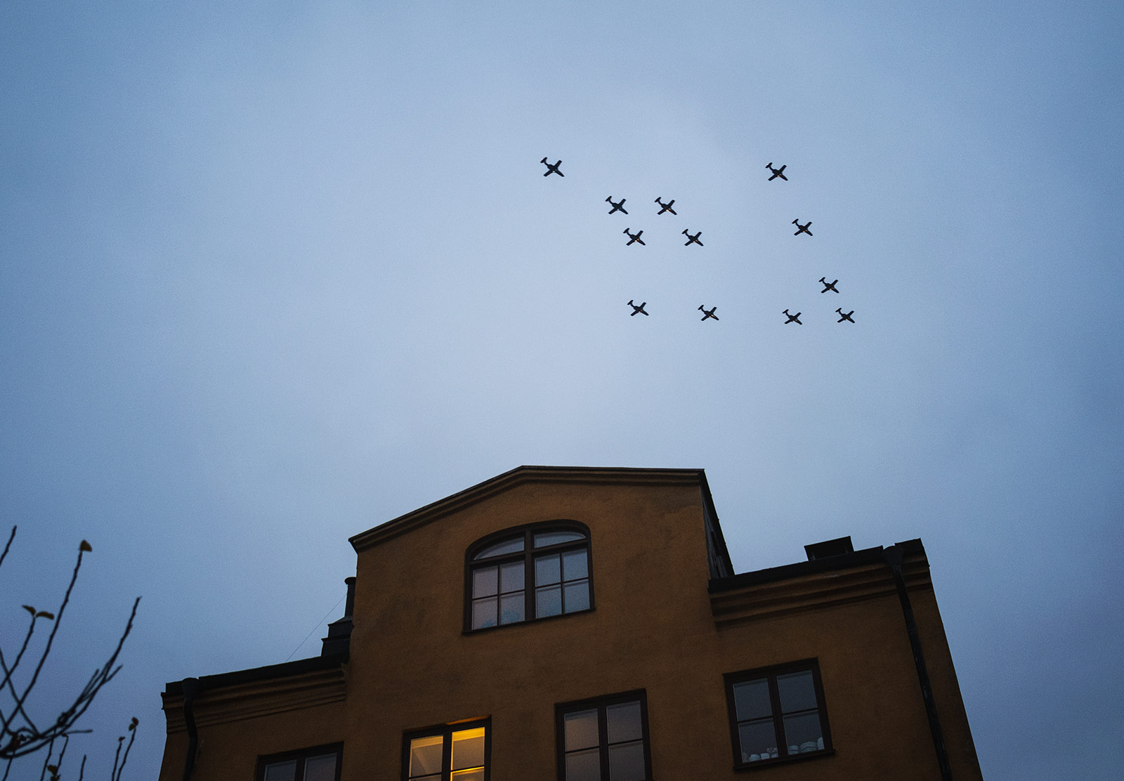 Planes in tree formation