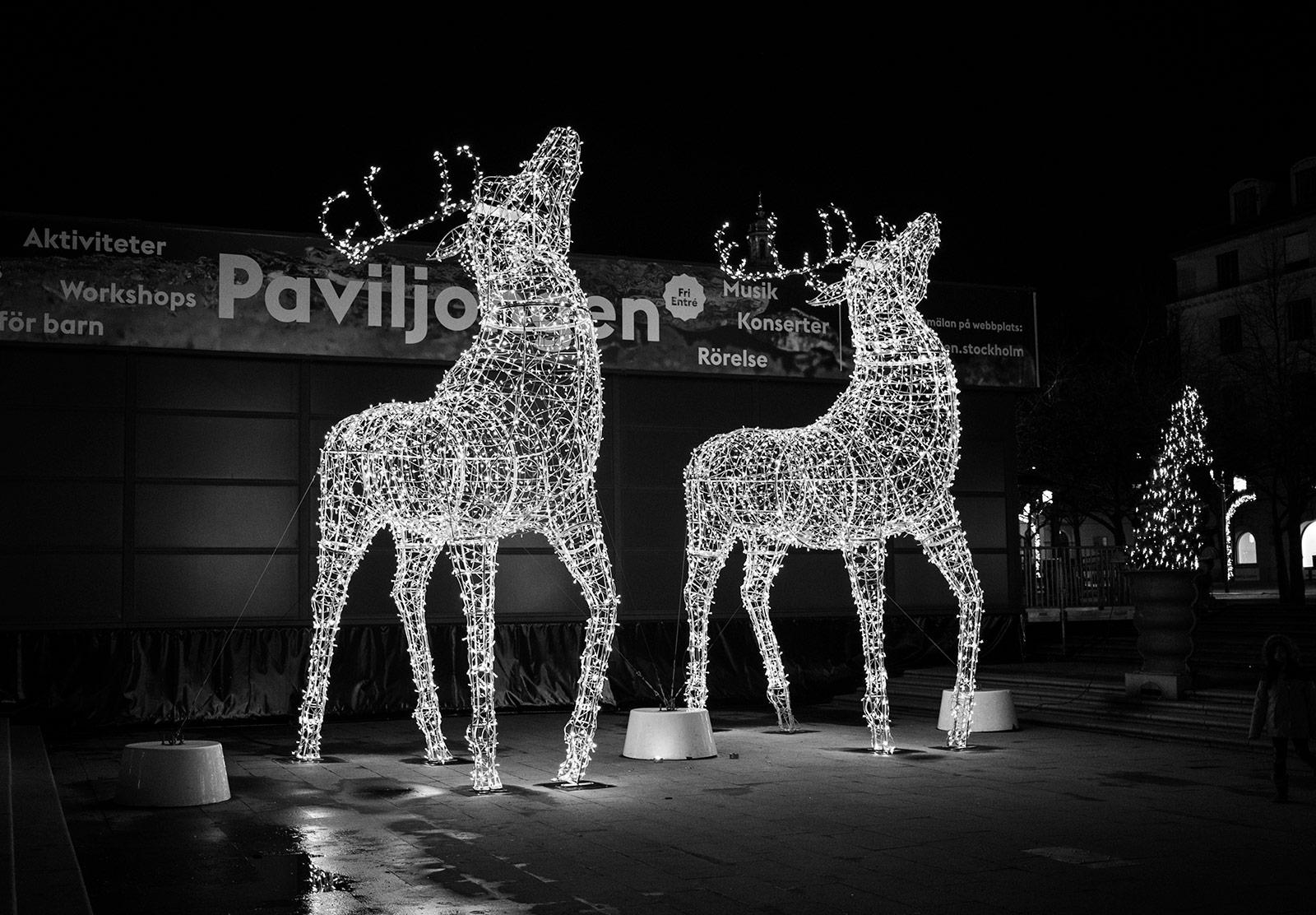 Giant lit reindeer