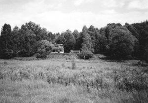 Wooden cabin amongst trees