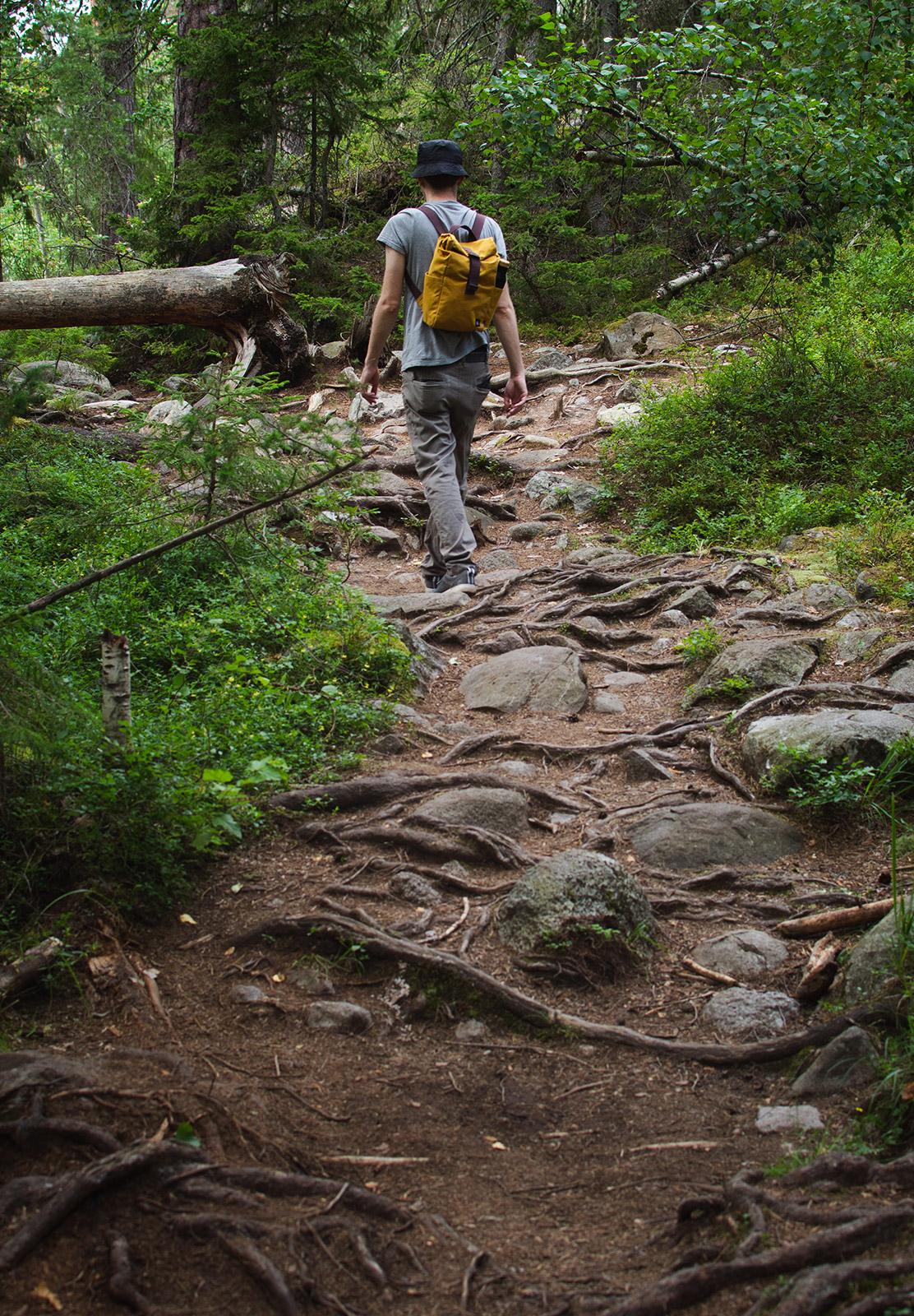 Rough hiking trail