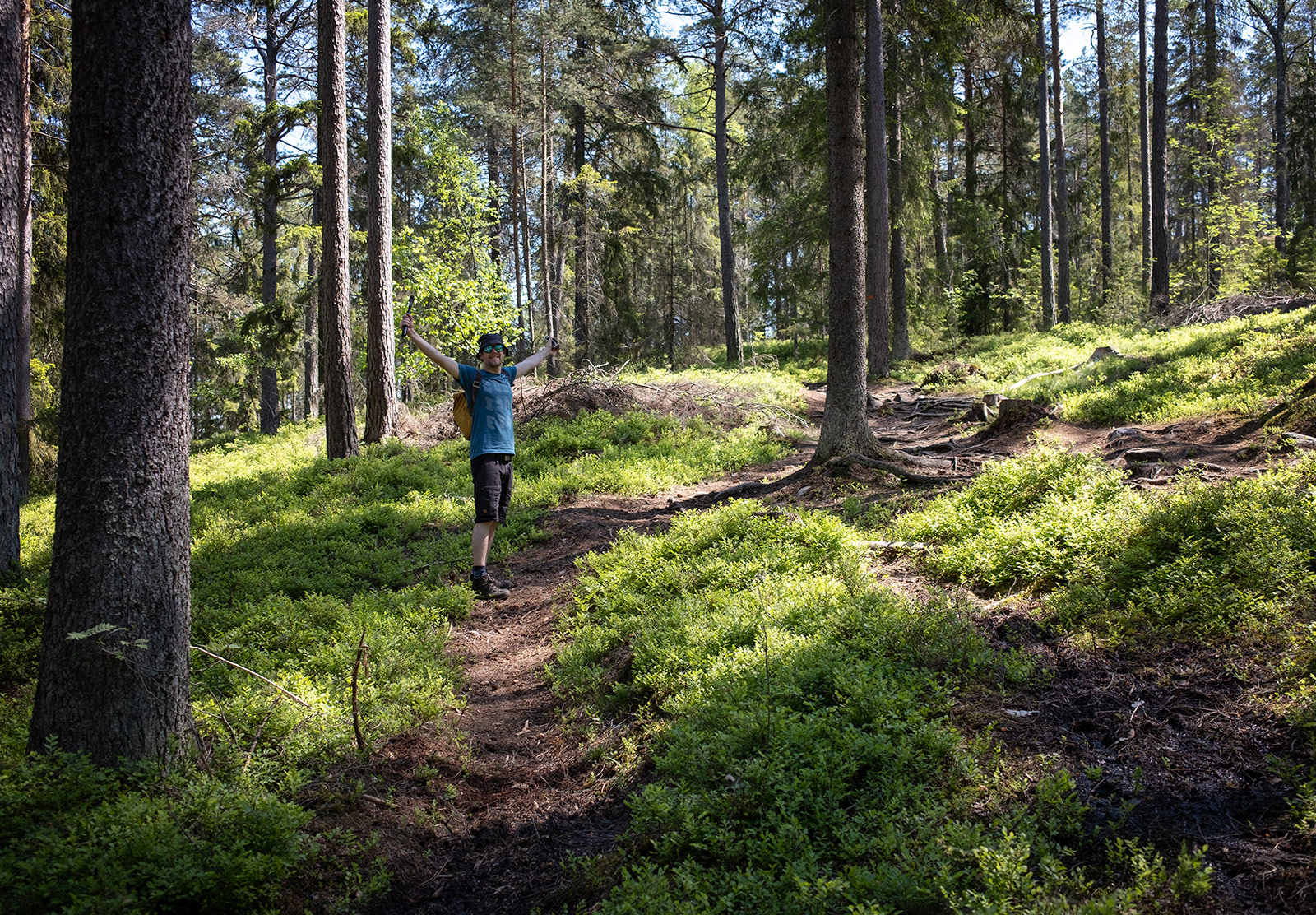 Man standing on forest path