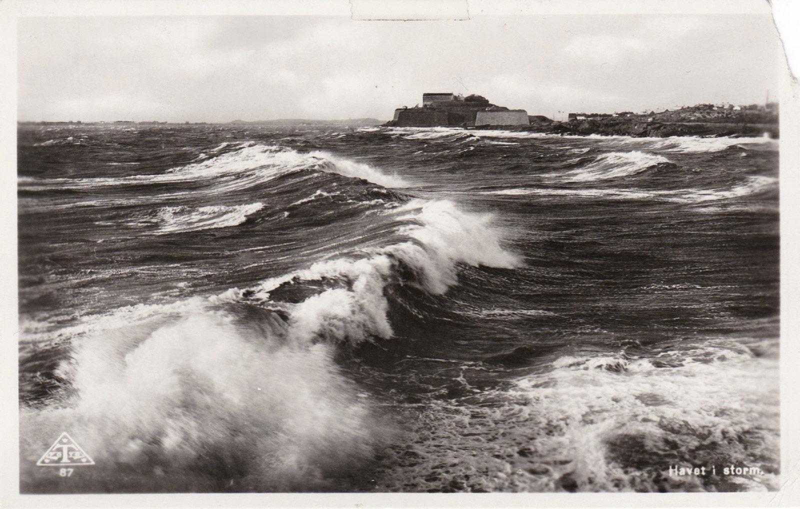 Sea print postcard