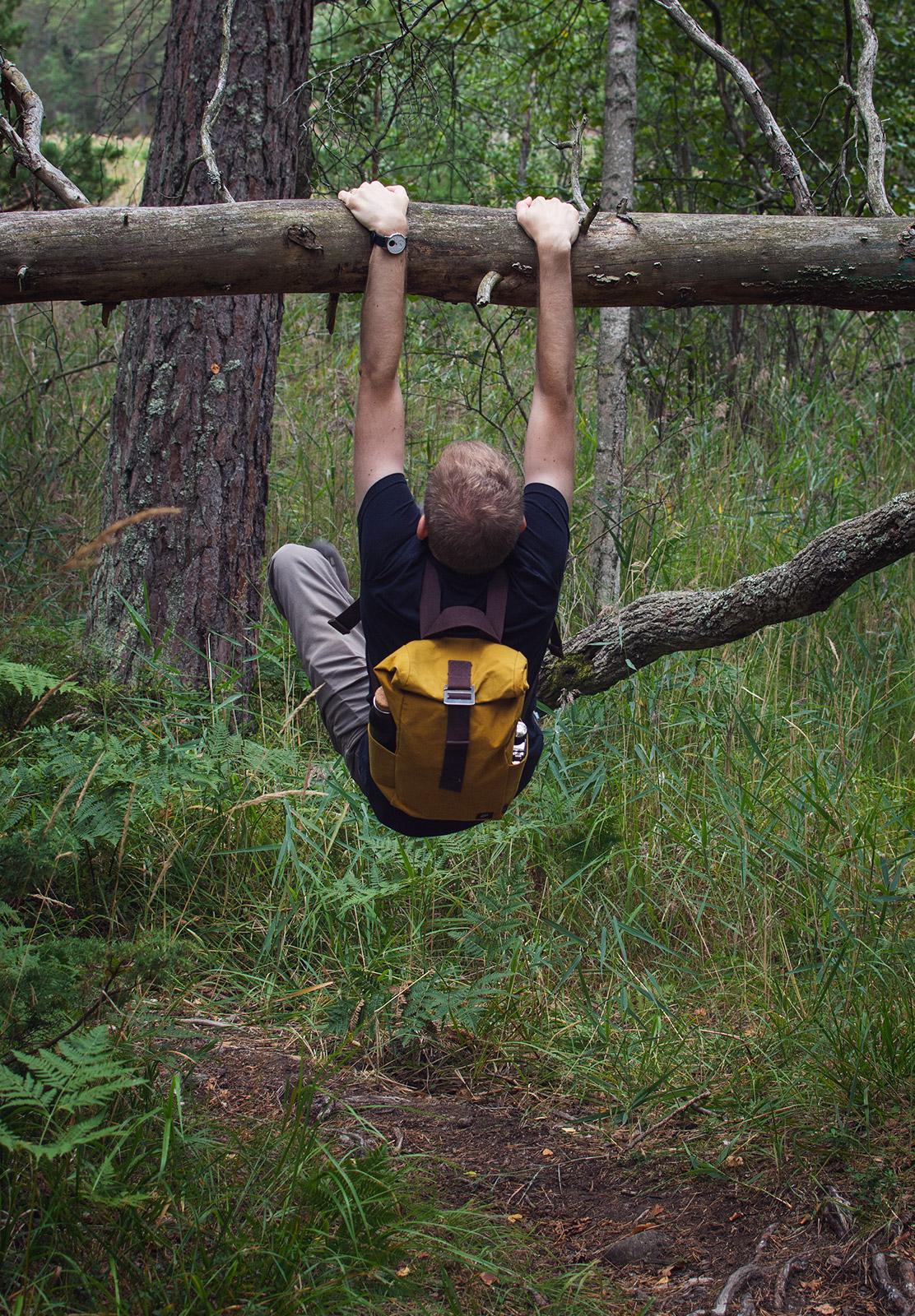 Man hanging from tree bracnh