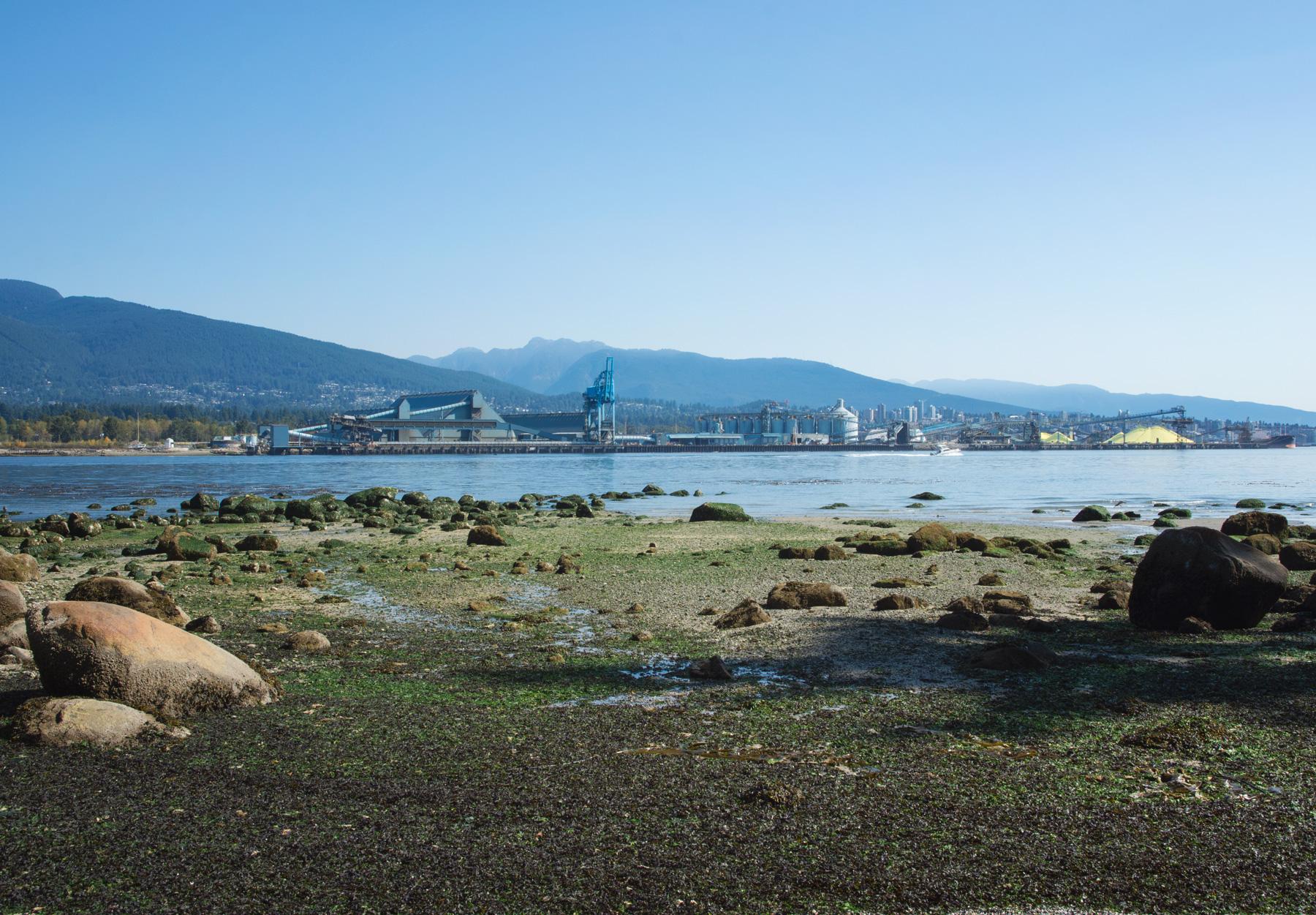 View onto shoreline