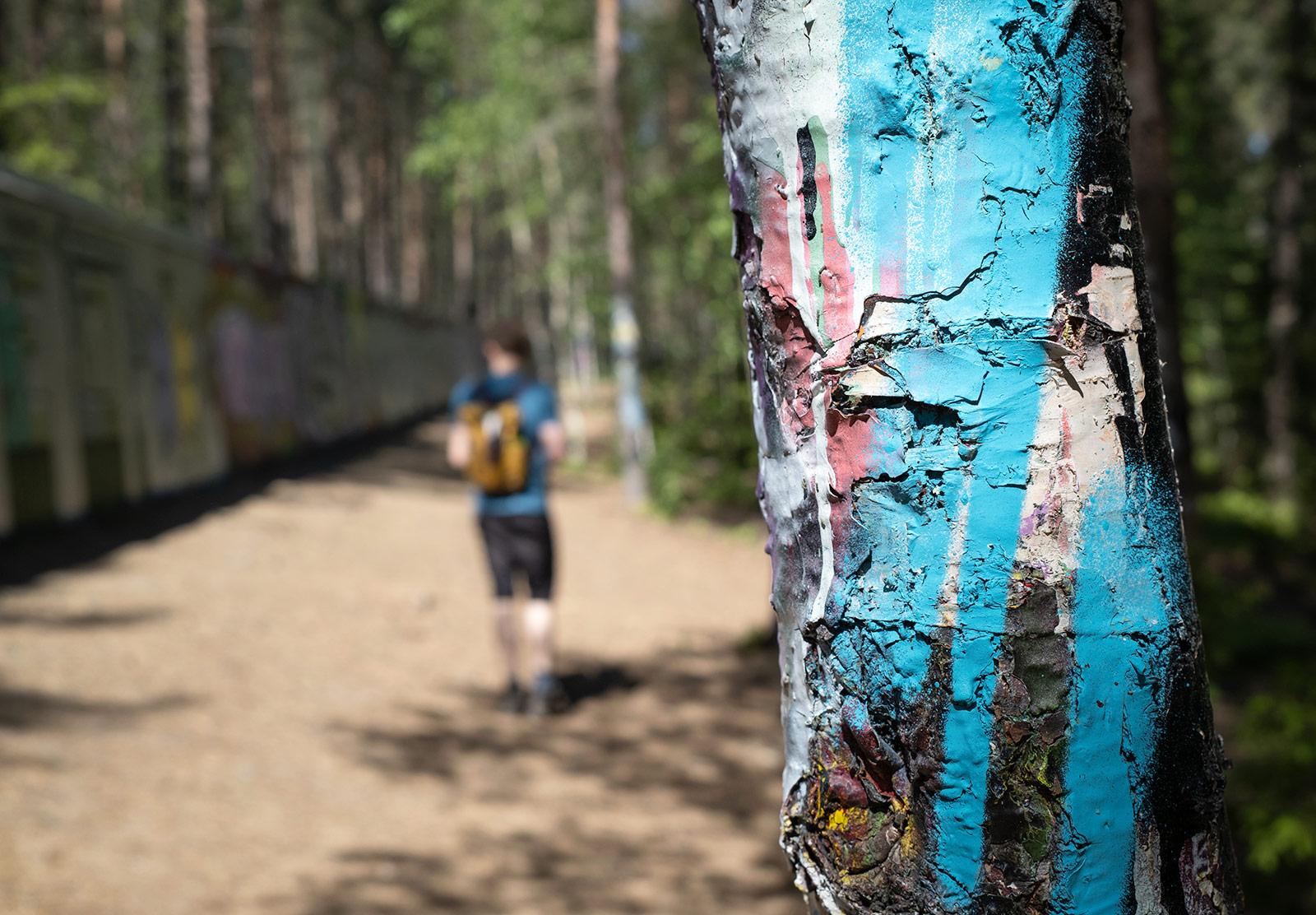 Spraypaint on tree