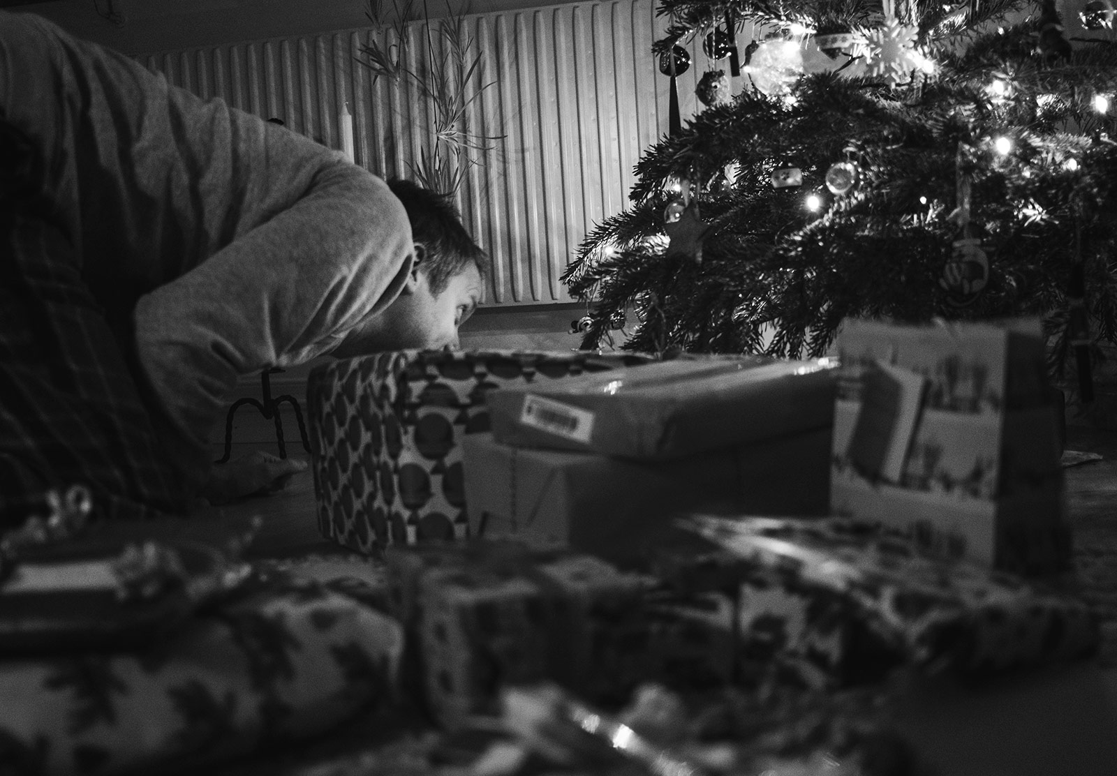 Man peering under Christmas tree
