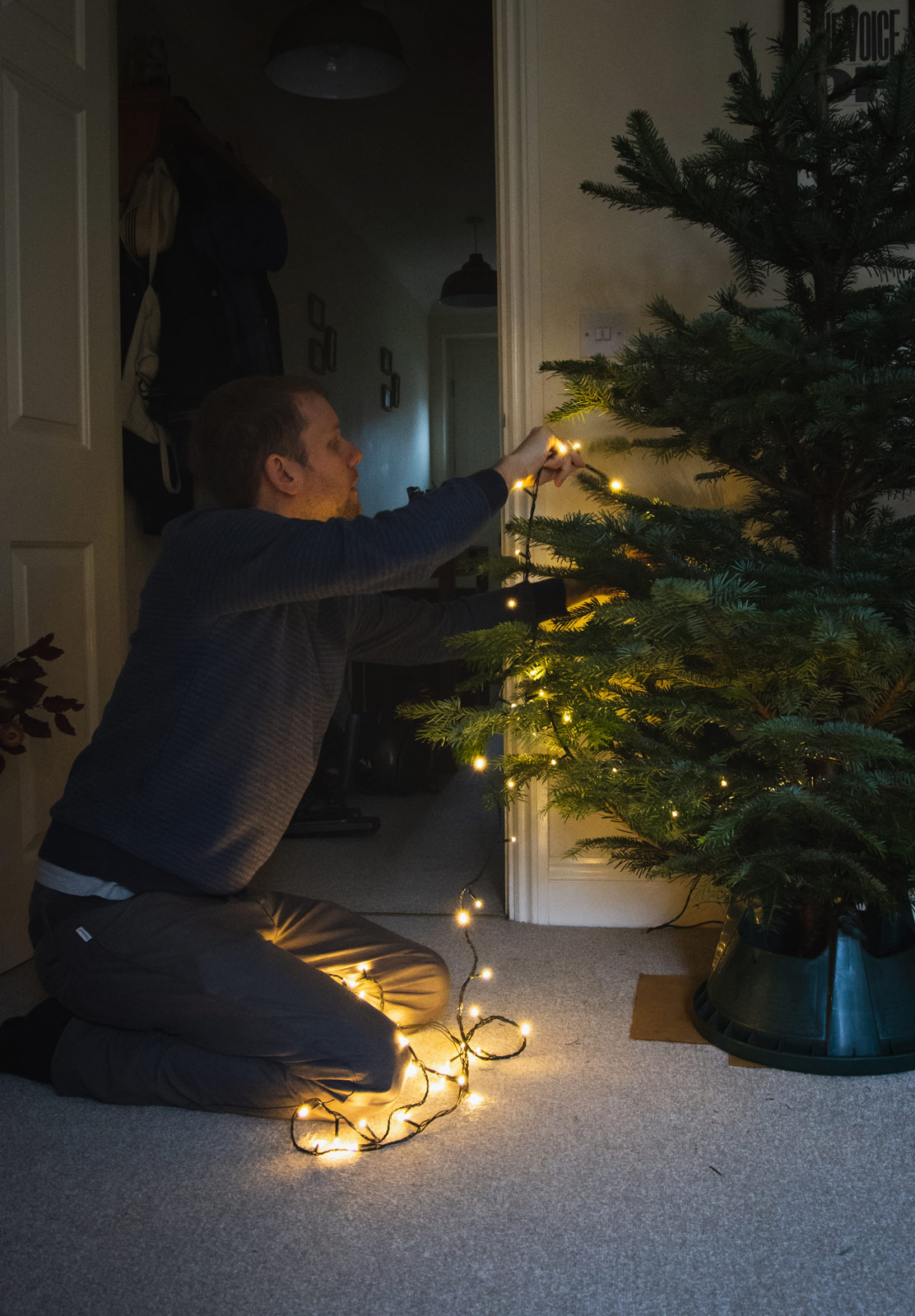 Man putting lights on tree